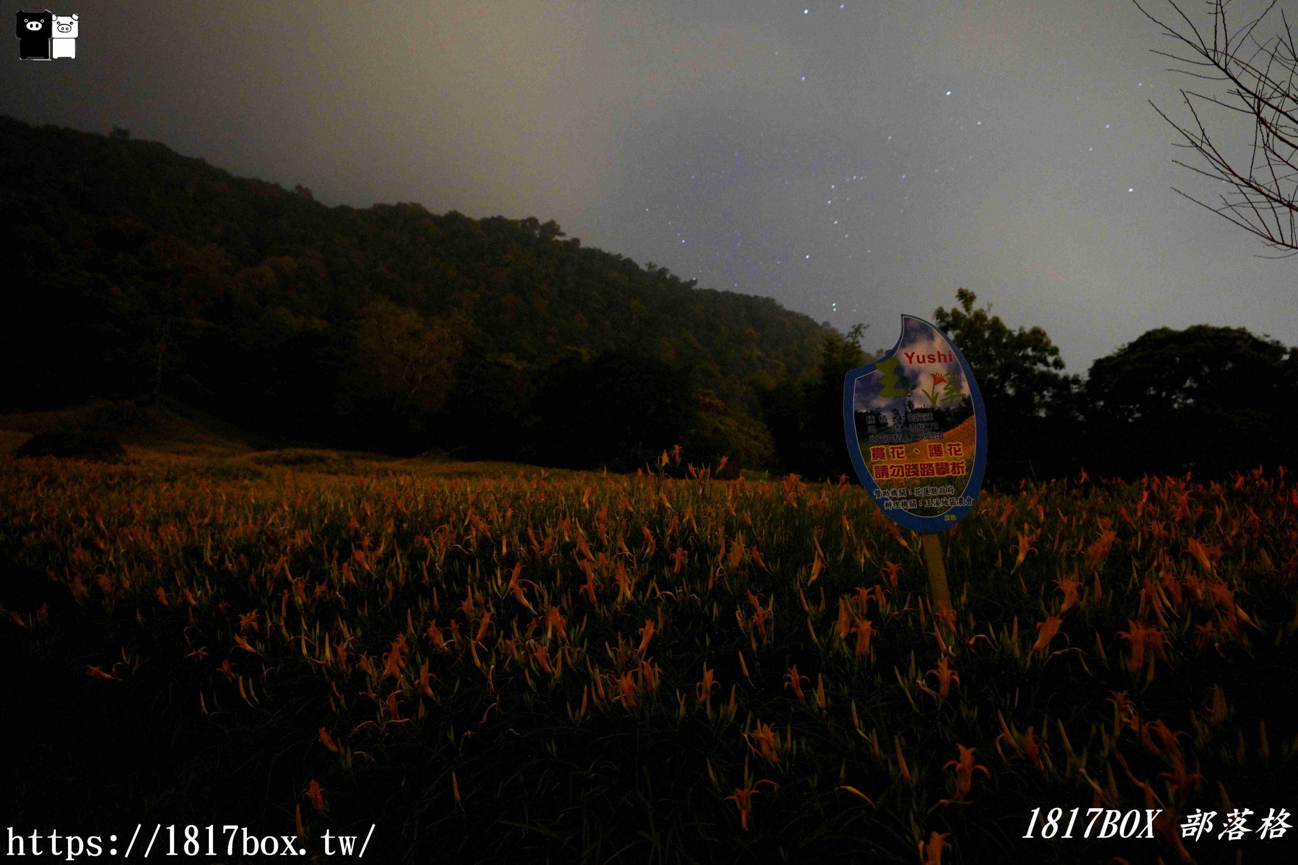 【花蓮。玉里】夜拍赤科山金針花海。星空銀河X螢火蟲與花海相伴 @1817BOX部落格