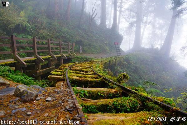 【宜蘭。大同】一探CNN評選全球最美28小路之一。見晴懷古步道。見晴線運材軌道 @1817BOX部落格